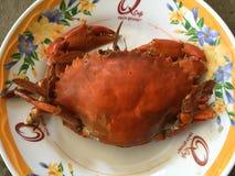 越南泥螃蟹赛拉serrata BBQ螃蟹或烤螃蟹 库存照片