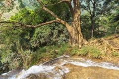 越南瀑布 库存照片