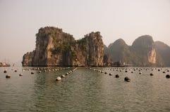 越南珍珠村庄 免版税图库摄影
