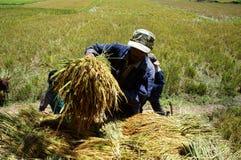 越南9月03日 免版税库存图片