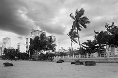 越南 海边镇、棕榈树和云彩 在岸的越南圆的柳条小船 黑色白色 免版税库存图片