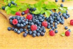 越桔和莓水多的成熟莓果在木匙子 库存图片