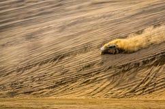 越野车辆驾驶在沙子沙漠 库存照片