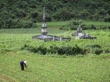 古老坟墓在越南 库存图片