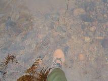 趟过在河底的Fishermens鞋子 免版税库存照片