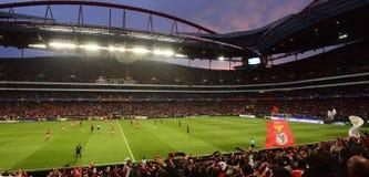 足球场全景,欧洲橄榄球,本菲卡队-拜仁慕尼黑 免版税库存图片