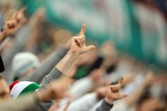 足球迷,小流氓 免版税库存照片