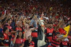 足球-巴西 库存照片