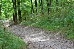 足迹在公园 图库摄影