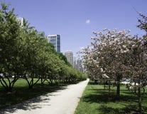 足迹在格兰特公园的芝加哥 库存照片