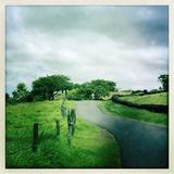 足迹在毛伊的库拉在夏威夷 免版税库存图片