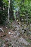 足迹在苏必利尔湖省公园 免版税库存图片