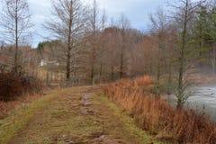 足迹在荒凉的冬日 免版税库存照片