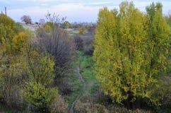足迹在Vacaresti自然公园,布加勒斯特,罗马尼亚 库存照片
