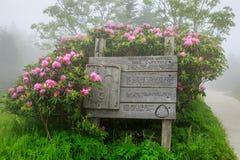足迹标志软羊皮的山田纳西北卡罗来纳雾 免版税库存图片