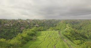足迹艺术家巴厘岛,印度尼西亚 股票视频