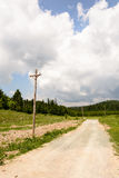 足迹通过一个杉木森林在克罗地亚 库存照片