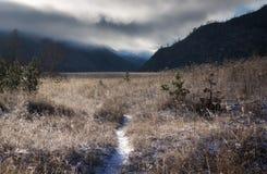 足迹通过用霜报道的草地在黎明,阿尔泰山,西伯利亚,俄罗斯 库存图片