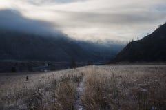 足迹通过用霜报道的草地在黎明,阿尔泰 免版税库存图片