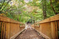 足迹通过Hocking Hils国家公园,俄亥俄 图库摄影