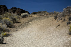 足迹,堡垒岩石国家公园,中央俄勒冈 免版税库存照片