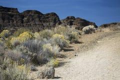 足迹,堡垒岩石国家公园,中央俄勒冈 图库摄影
