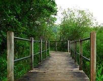 足迹,老木地板木板走道在湖附近的 免版税图库摄影