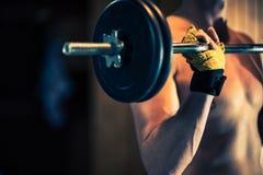 活跃健身房锻炼 库存图片