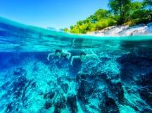 活跃潜水者夫妇 免版税库存图片