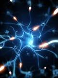 活跃神经细胞 免版税库存照片