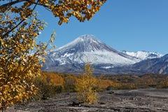 活跃Avacha火山秋天视图在堪察加,俄罗斯的 免版税图库摄影