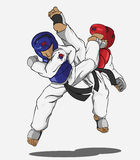 跆拳道武术 免版税图库摄影