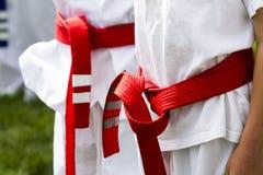 跆拳道 库存照片