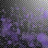 跌倒紫罗兰色花的瓣 不可磨灭的浪漫花梯度 在透明的飞行瓣 库存例证