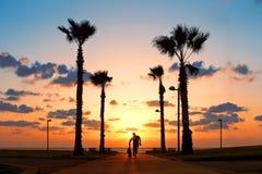 跑与在日落的滑板的人 库存照片