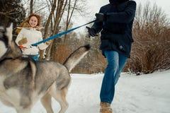 跑与沿多雪的森林的西伯利亚爱斯基摩人的愉快的年轻夫妇的快乐的步行 库存图片