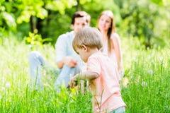 跑和使用在有家庭的草甸的男孩 库存照片