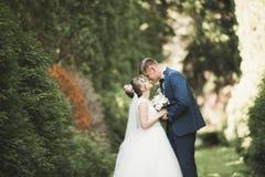 跑和跳跃在公园的新婚的夫妇,当握手时 图库摄影