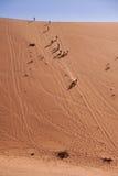 跑在一个沙丘下的人们在纳米比亚沙漠,纳米比亚 免版税库存照片