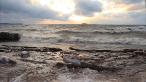 跑在一个水库的结冰的海岸的波浪在秋天的在日落,鄂毕河,西伯利亚 股票视频