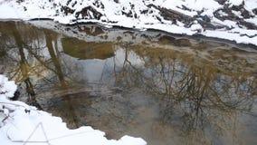 跑在一条快速的春天小河的冰水 反射在小河水中的小屋 股票录像
