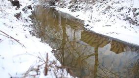 跑在一条快速的春天小河的冰水 反射在小河水中的木客舱 影视素材