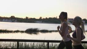 跑在公园的两名年轻俏丽的妇女在河附近在日落,减重,健身期间塑造跑步,美丽的景色 影视素材