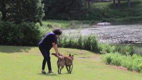跑在公园的狗和妇女 股票录像