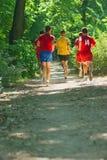 跑在公园-健身训练 免版税库存照片