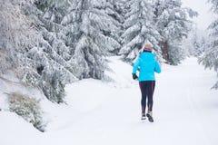 跑在冬天 免版税库存图片