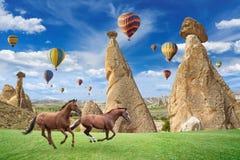 跑在卡帕多细亚,土耳其的热空气迅速增加和两匹马 免版税库存图片