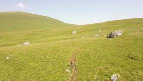 跑在山高地鸟瞰图的夏天草甸的年轻人 股票视频