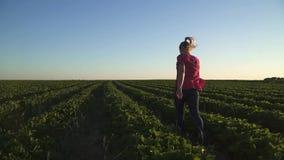 跑在慢动作的年轻无忧无虑的女孩ay草莓领域 影视素材