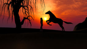 跑在日落下的马在有妇女剪影的沙漠 免版税库存图片